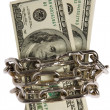 图库照片: Dollars with chain on white background