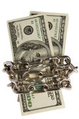 Dollars with chain on white background — Stock Photo