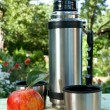 Thermos and apple on background — 图库照片