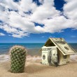 Dollar house on sand. — Stock Photo