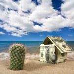 Dollar house on sand. — Stock Photo