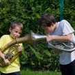 Stock Photo: Brothers playing on horn
