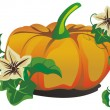 Vector pumpkin for halloween design — Vector de stock #1049956
