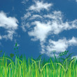 Stock Photo: Blue sky,green grass and clouds