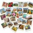 Stack of photos with India landmarks — Stock Photo