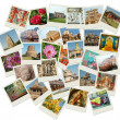 Stack of photos with India landmarks — 图库照片