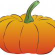 Vector pumpkin - Stockvectorbeeld