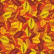 Autumn leaves vector background — Vector de stock