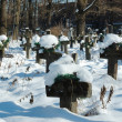 Old ukranian graveyard in winter — Stock Photo