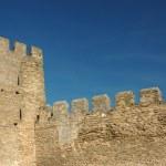 Wall of old moldavian fortress — Stock Photo #1301101