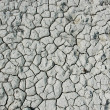 Royalty-Free Stock Photo: Dry ground texture