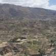 colca canyon — Stock Photo