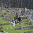 Ruins of Machu Picchu - Stock Photo