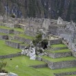 Ruins of Machu Picchu — Stock Photo