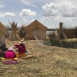 Uros — Stock Photo #1435646
