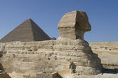 Sphinx and pyramid — Stock Photo