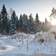 Winter in Europe — Stock Photo