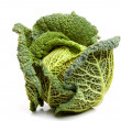 Ripe savoy cabbage — Stock Photo
