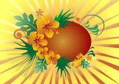 Floral banner with sunlight — Stock Vector