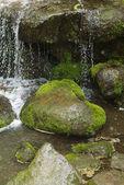 Scenic waterfall — Stock Photo