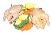 Two raw chickens isolated — Stock Photo