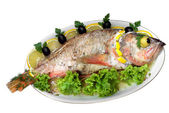 Baked fish isolated — Stock Photo
