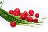 Garden radishes and green spring onions — Stock Photo