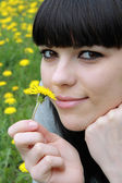 Brunette on herb with dandelions — Stock Photo