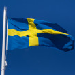 Royalty-Free Stock Photo: Flag of Sweden