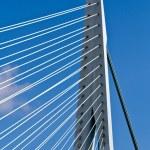 Erasmus Bridge. Pilons — Stock Photo
