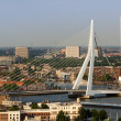 Erasmus bridge from Euromast - Stock Photo