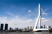 Meuse River and Erasmus Bridge — Stock fotografie