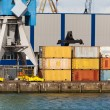 Stacked containers and crane — Stock Photo