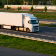 Freight truck on motorway — Stock Photo