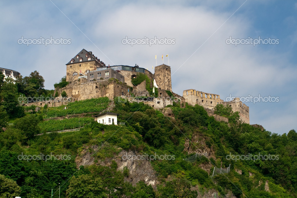 Old castle on hill. From the series Castles on the Rhine river — Stok fotoğraf #1809013