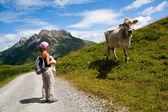 Ragazza e mucca delle Alpi — Foto Stock