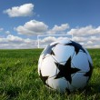 Soccer ball — Stock Photo #1067402