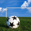Royalty-Free Stock Photo: A soccer ball