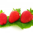 Juicy strawberry — Stock Photo #1068606