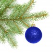 Ball on christmas tree — Stock Photo