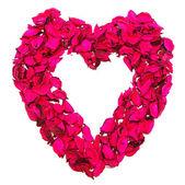 Pétalos de rosa — Foto de Stock