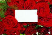 сообщение на розы — Стоковое фото