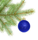 Ball on christmas tree — Stock Photo