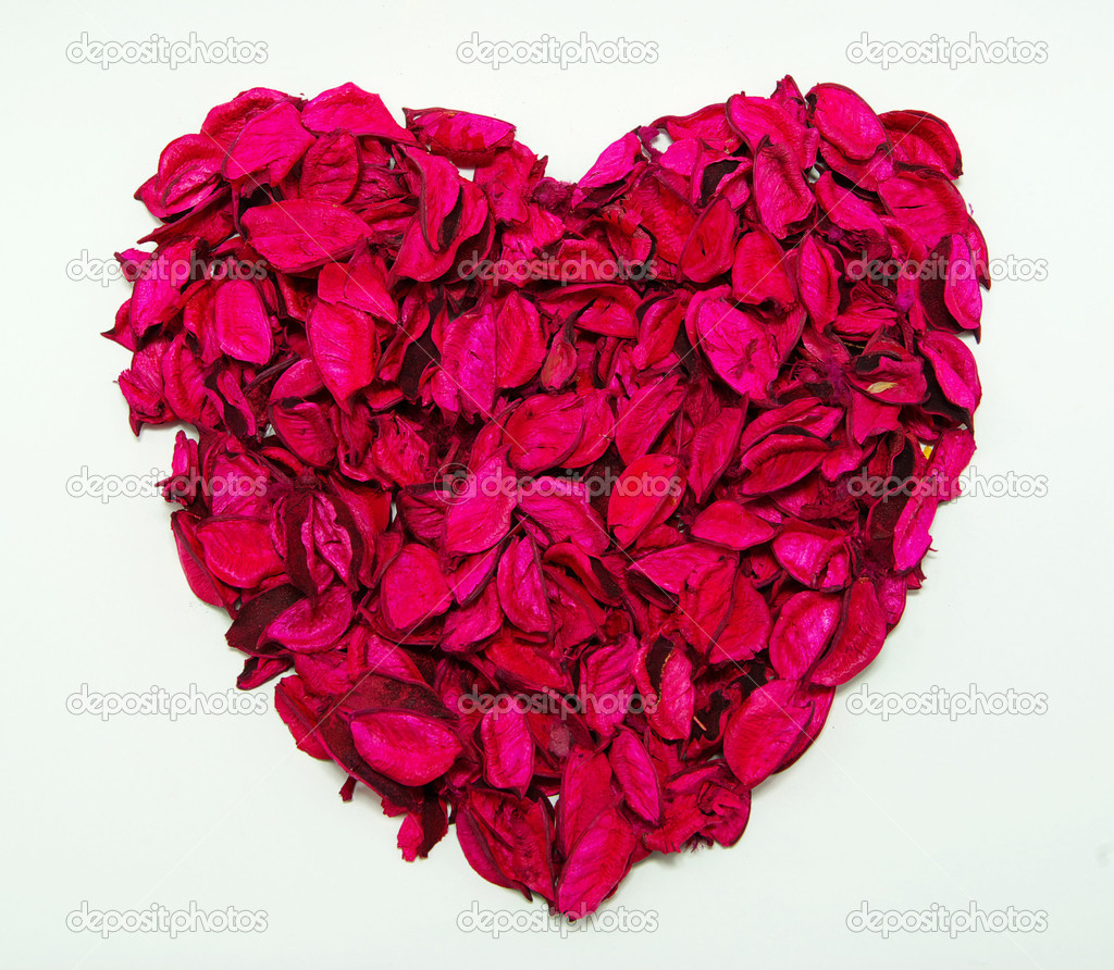 heart made with red rose petals — Stock Photo #1067634