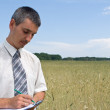 Man inspecting the wheat — Stock Photo #1080276