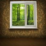 Window — Stock Photo #1059716