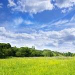 пейзаж — Стоковое фото
