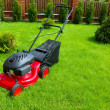 Lawn mower — Stock Photo #1066901