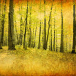 Royalty-Free Stock Photo: Vintage  forest photo