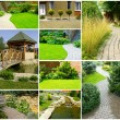 garden collage — Stock Photo